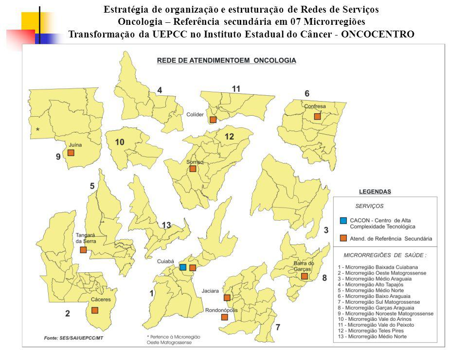 Estratégia de organização e estruturação de Redes de Serviços