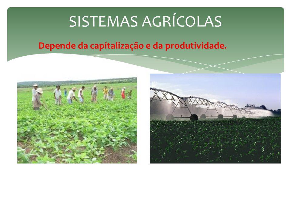 sistemas agrícolas Depende da capitalização e da produtividade.