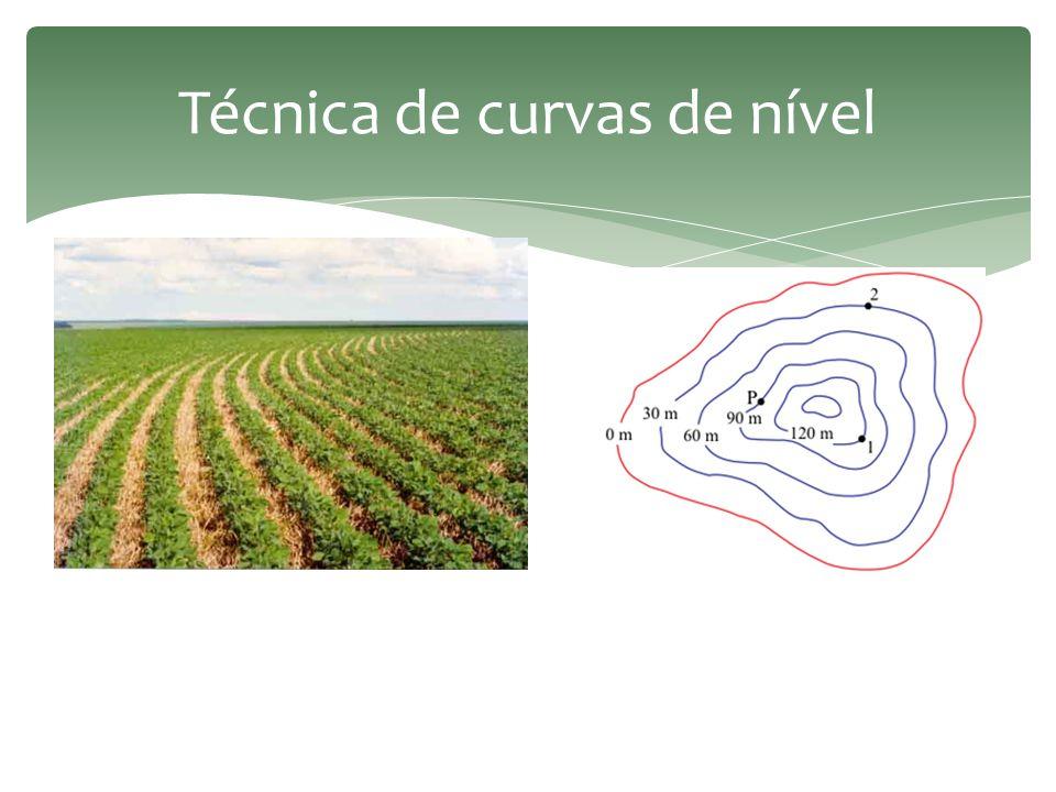 Técnica de curvas de nível