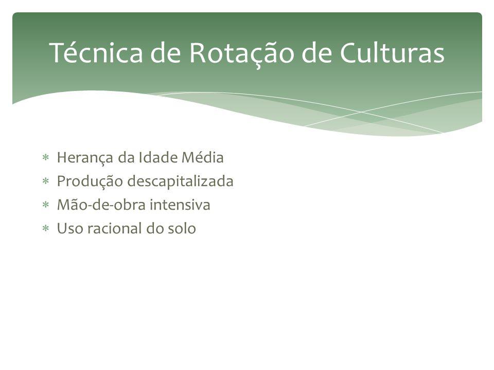 Técnica de Rotação de Culturas
