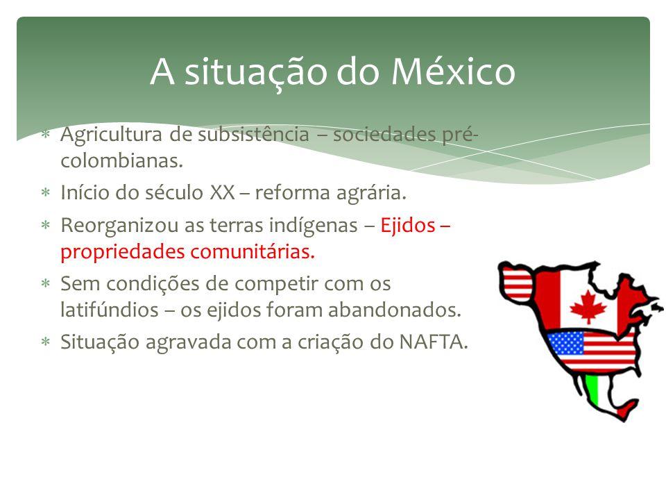 A situação do México Agricultura de subsistência – sociedades pré- colombianas. Início do século XX – reforma agrária.