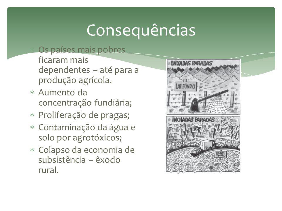 Consequências Os países mais pobres ficaram mais dependentes – até para a produção agrícola. Aumento da concentração fundiária;