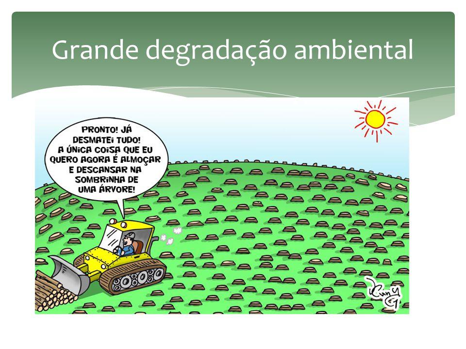 Grande degradação ambiental