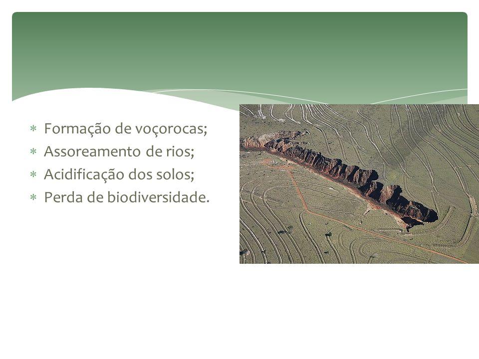 Formação de voçorocas;