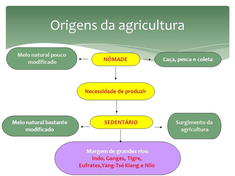 Origens da agricultura