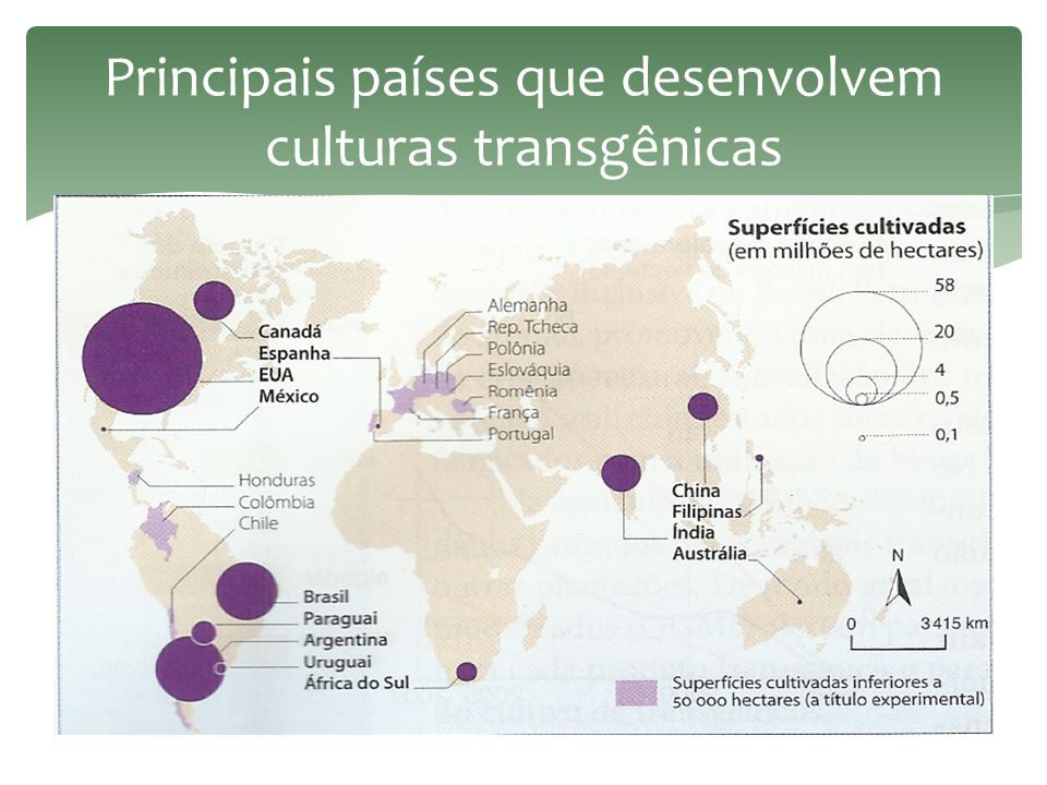 Principais países que desenvolvem culturas transgênicas