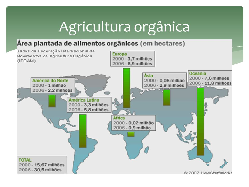 Agricultura orgânica