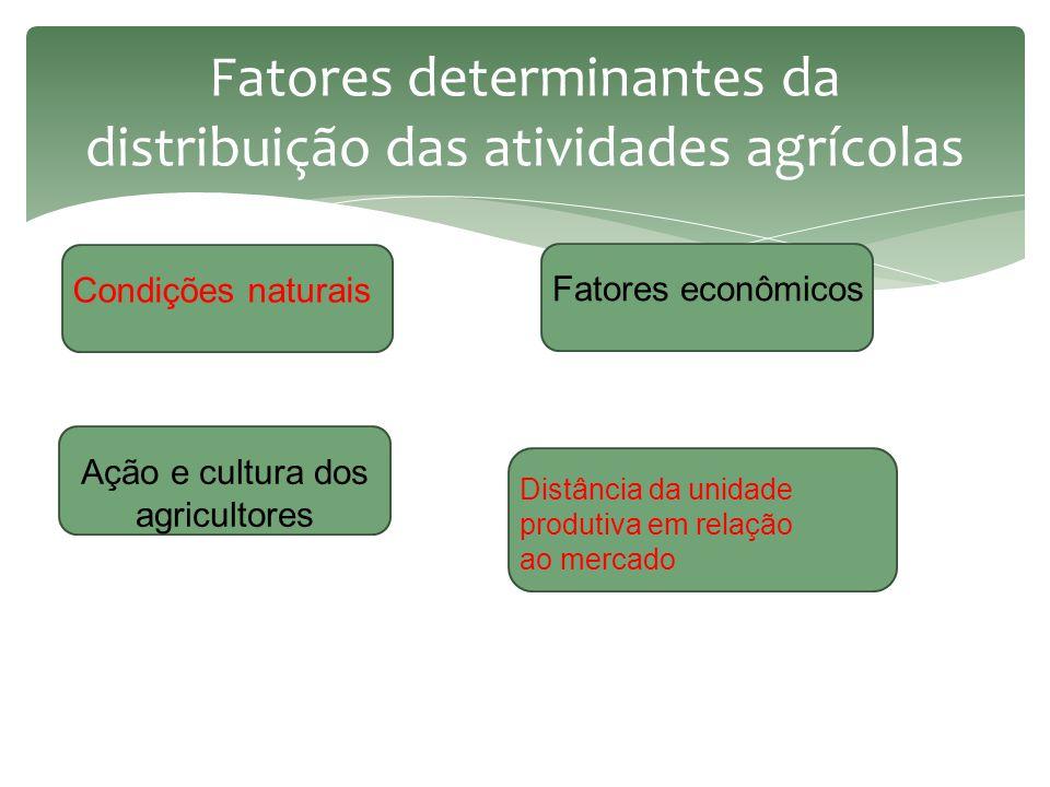 Fatores determinantes da distribuição das atividades agrícolas