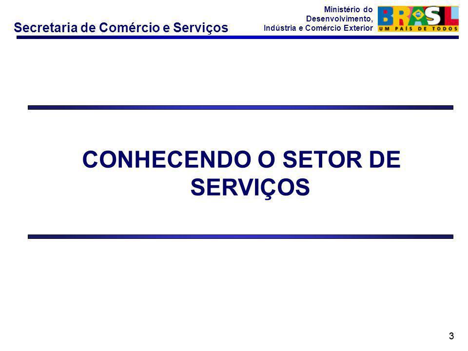 CONHECENDO O SETOR DE SERVIÇOS
