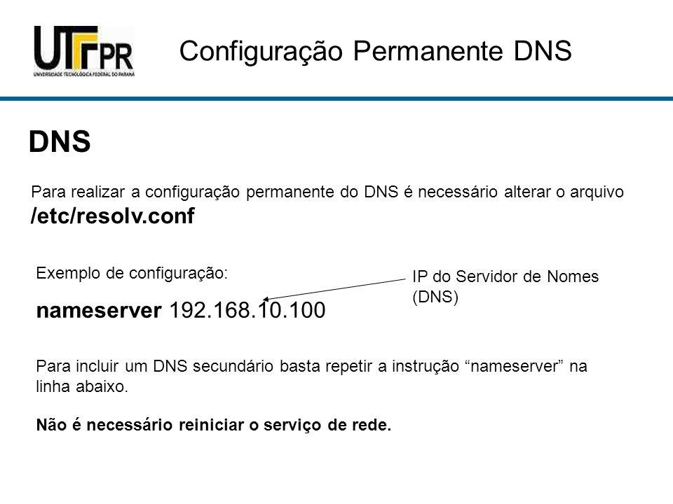 DNS Configuração Permanente DNS nameserver 192.168.10.100