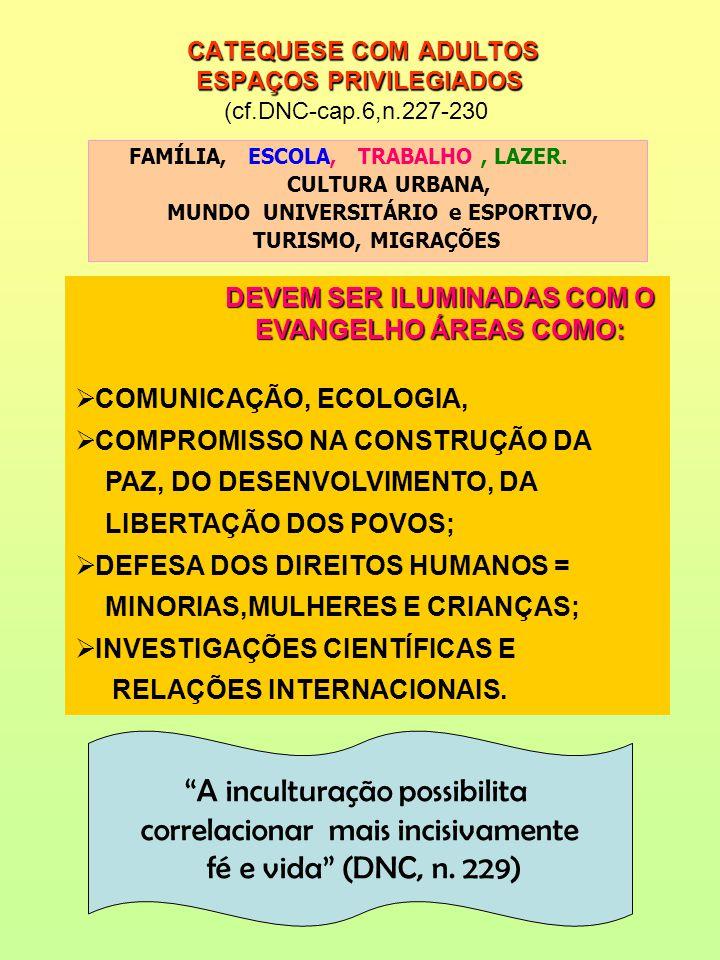 CATEQUESE COM ADULTOS ESPAÇOS PRIVILEGIADOS (cf.DNC-cap.6,n.227-230