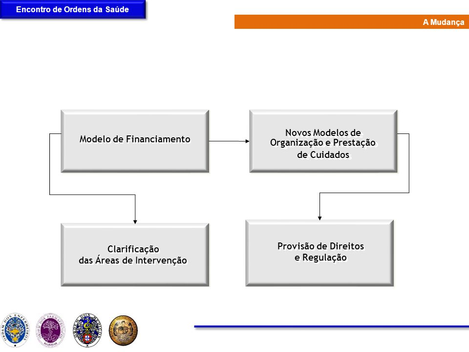 Novos Modelos de Organização e Prestação de Cuidados