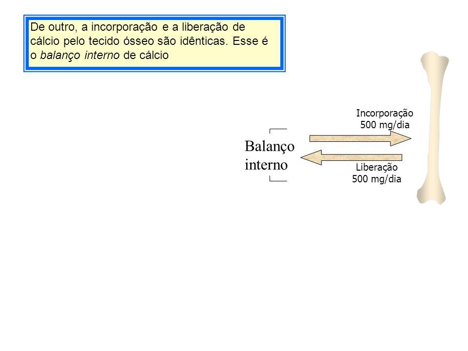 De outro, a incorporação e a liberação de cálcio pelo tecido ósseo são idênticas. Esse é o balanço interno de cálcio