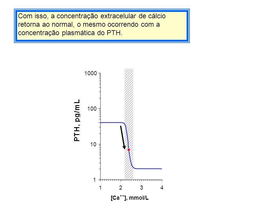 Com isso, a concentração extracelular de cálcio retorna ao normal, o mesmo ocorrendo com a concentração plasmática do PTH.