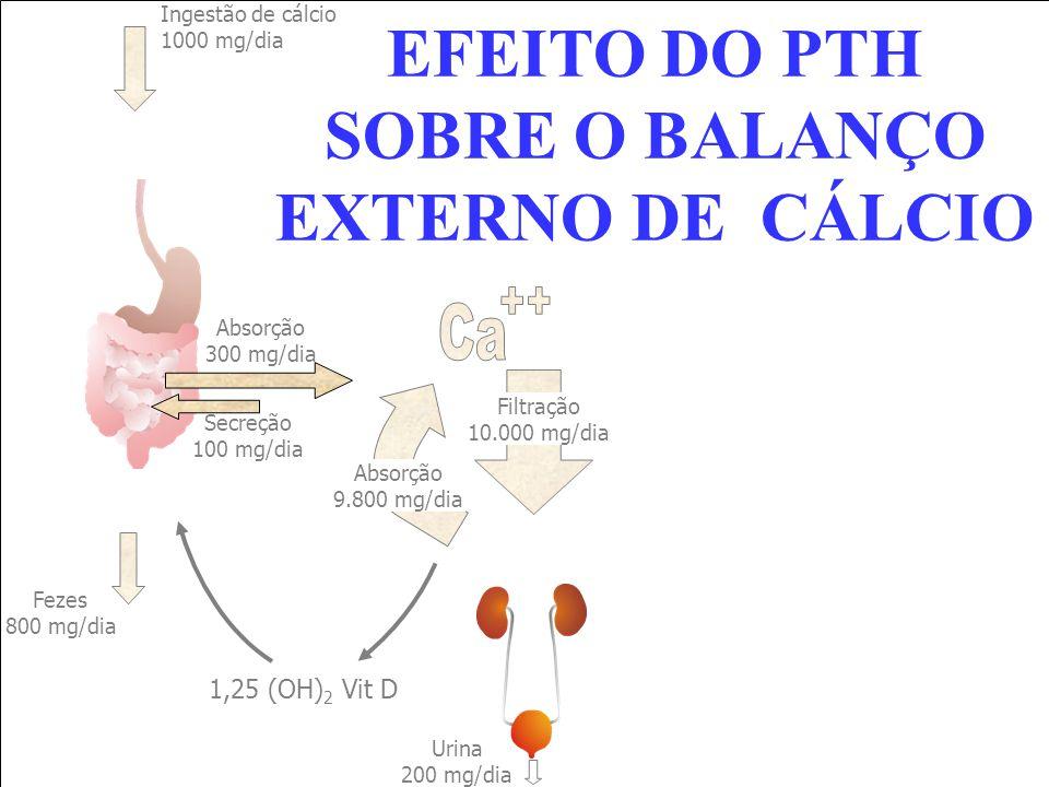 EFEITO DO PTH SOBRE O BALANÇO EXTERNO DE CÁLCIO