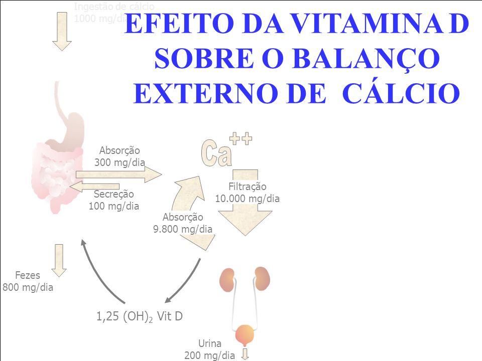 EFEITO DA VITAMINA D SOBRE O BALANÇO EXTERNO DE CÁLCIO