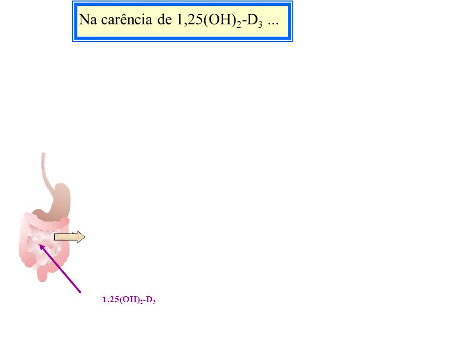 Na carência de 1,25(OH)2-D3 ... 1,25(OH)2-D3 1,25(OH)2-D3