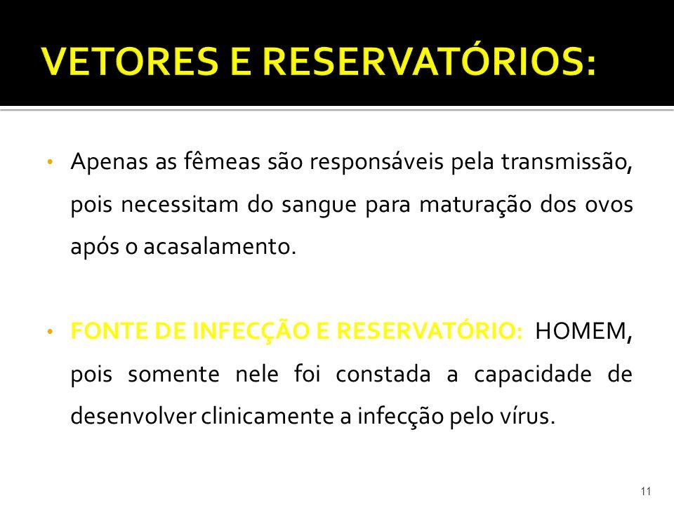 VETORES E RESERVATÓRIOS: