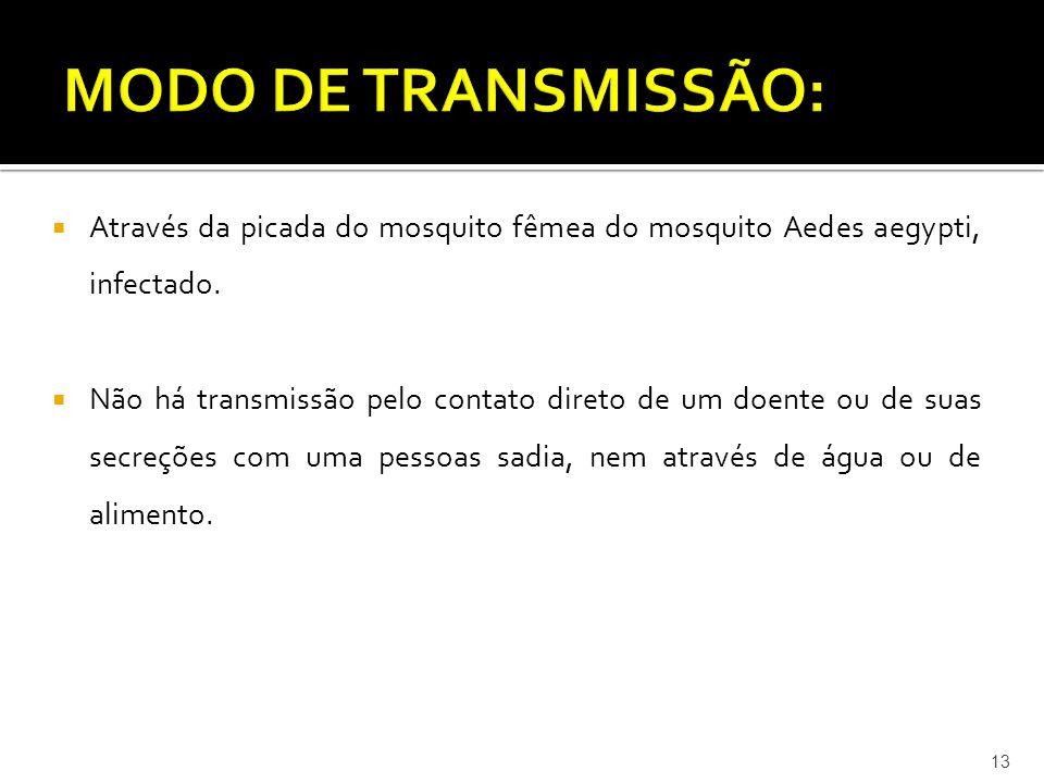 MODO DE TRANSMISSÃO: Através da picada do mosquito fêmea do mosquito Aedes aegypti, infectado.