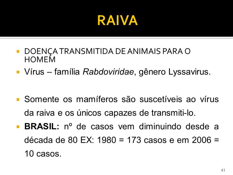 RAIVA DOENÇA TRANSMITIDA DE ANIMAIS PARA O HOMEM