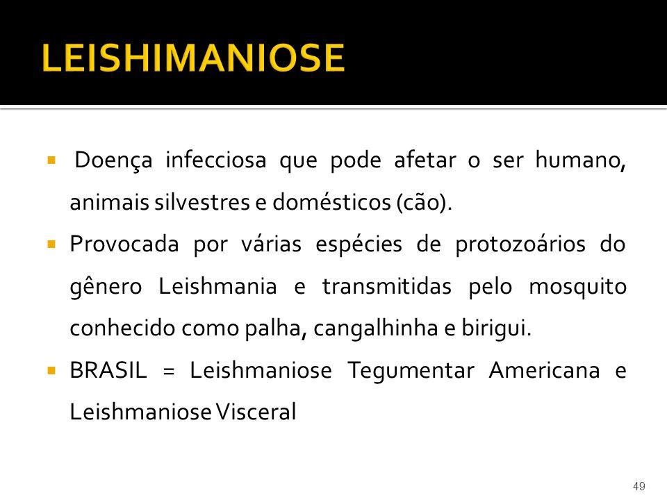 LEISHIMANIOSE Doença infecciosa que pode afetar o ser humano, animais silvestres e domésticos (cão).