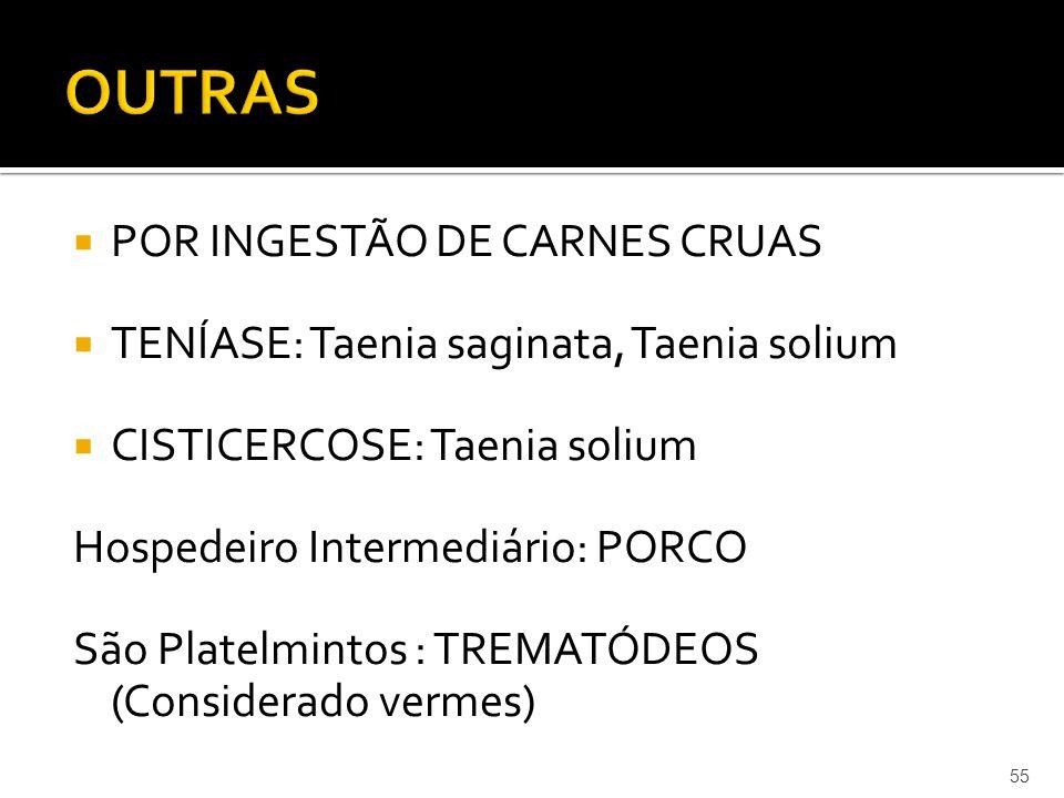 OUTRAS POR INGESTÃO DE CARNES CRUAS