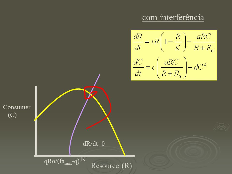 com interferência Consumer (C) dR/dt=0 K qRo/(famax-q) Resource (R)