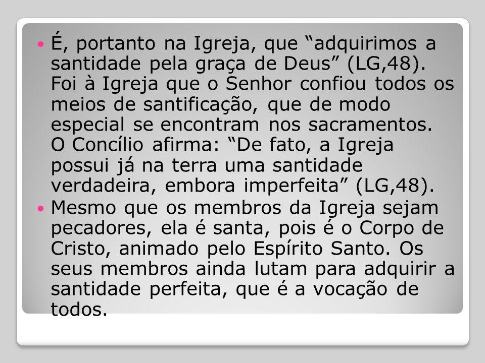 É, portanto na Igreja, que adquirimos a santidade pela graça de Deus (LG,48). Foi à Igreja que o Senhor confiou todos os meios de santificação, que de modo especial se encontram nos sacramentos. O Concílio afirma: De fato, a Igreja possui já na terra uma santidade verdadeira, embora imperfeita (LG,48).