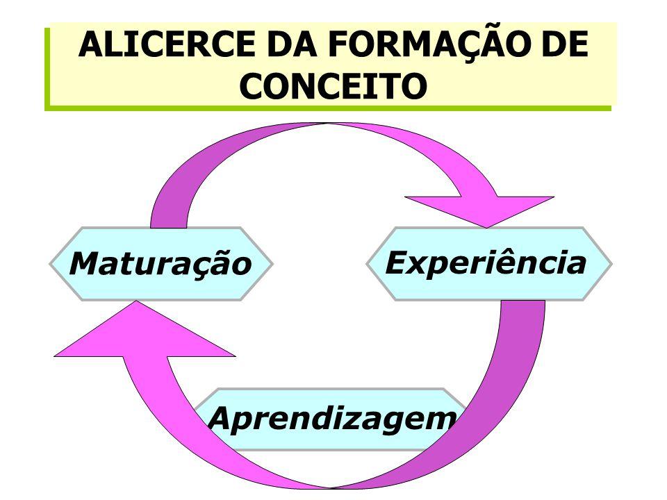 ALICERCE DA FORMAÇÃO DE CONCEITO