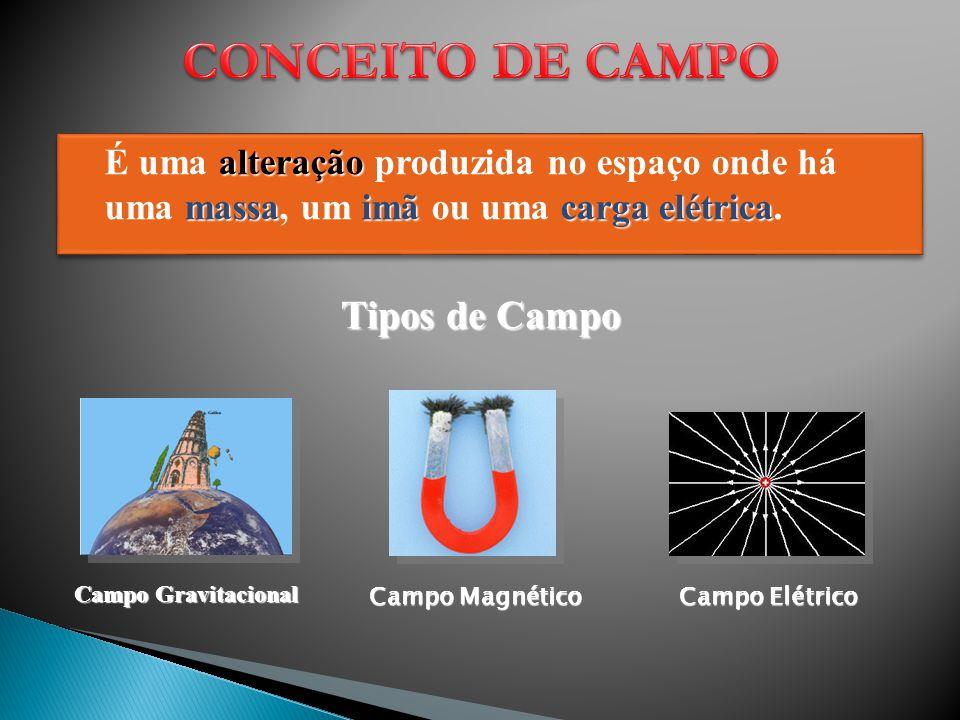 CONCEITO DE CAMPO Tipos de Campo