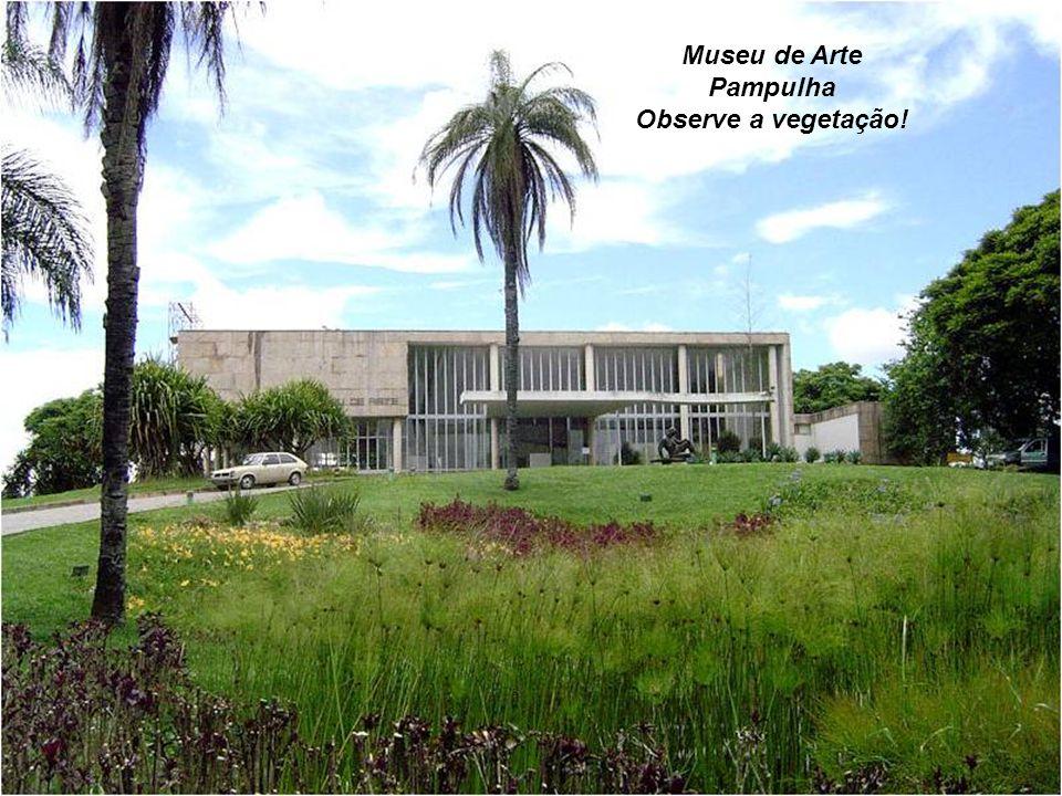 Museu de Arte Pampulha Observe a vegetação!