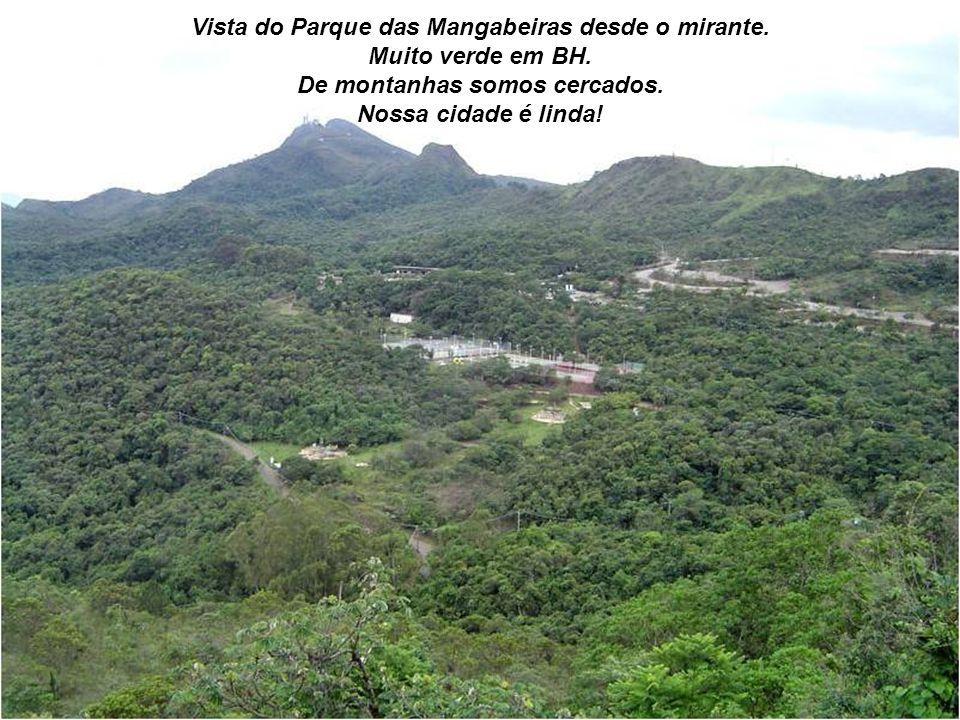 Vista do Parque das Mangabeiras desde o mirante. Muito verde em BH.