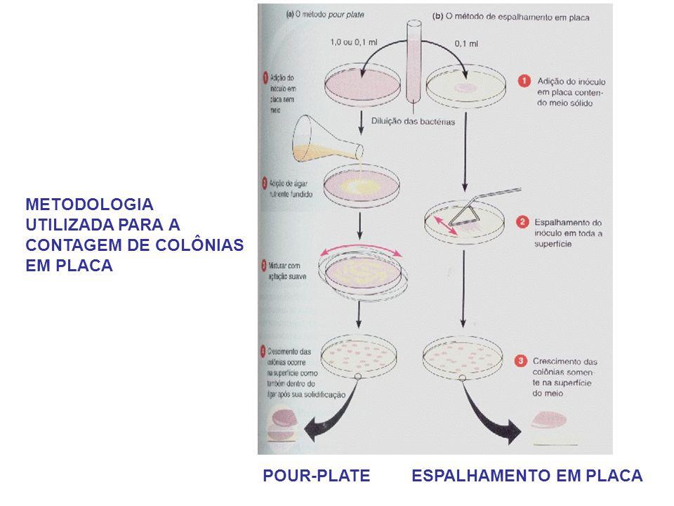 METODOLOGIA UTILIZADA PARA A CONTAGEM DE COLÔNIAS EM PLACA POUR-PLATE ESPALHAMENTO EM PLACA
