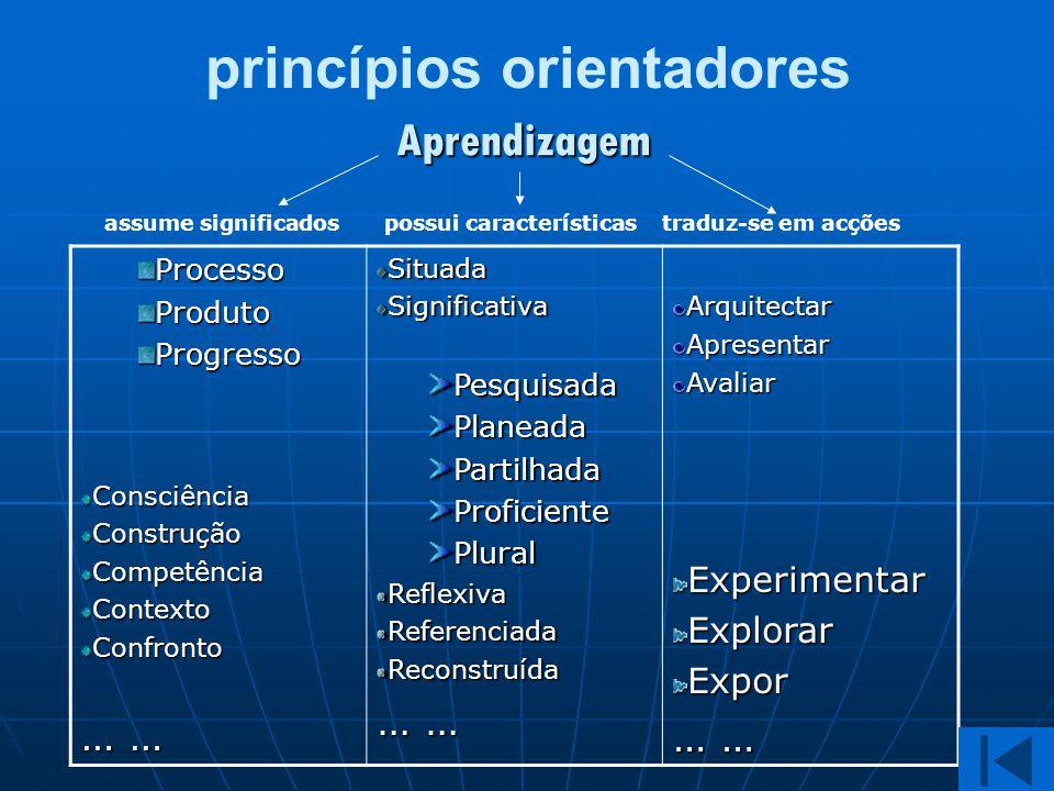 princípios orientadores