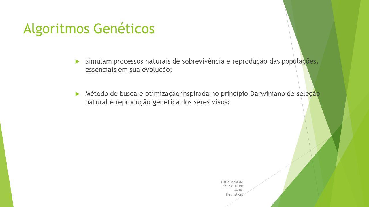 Algoritmos Genéticos Simulam processos naturais de sobrevivência e reprodução das populações, essenciais em sua evolução;