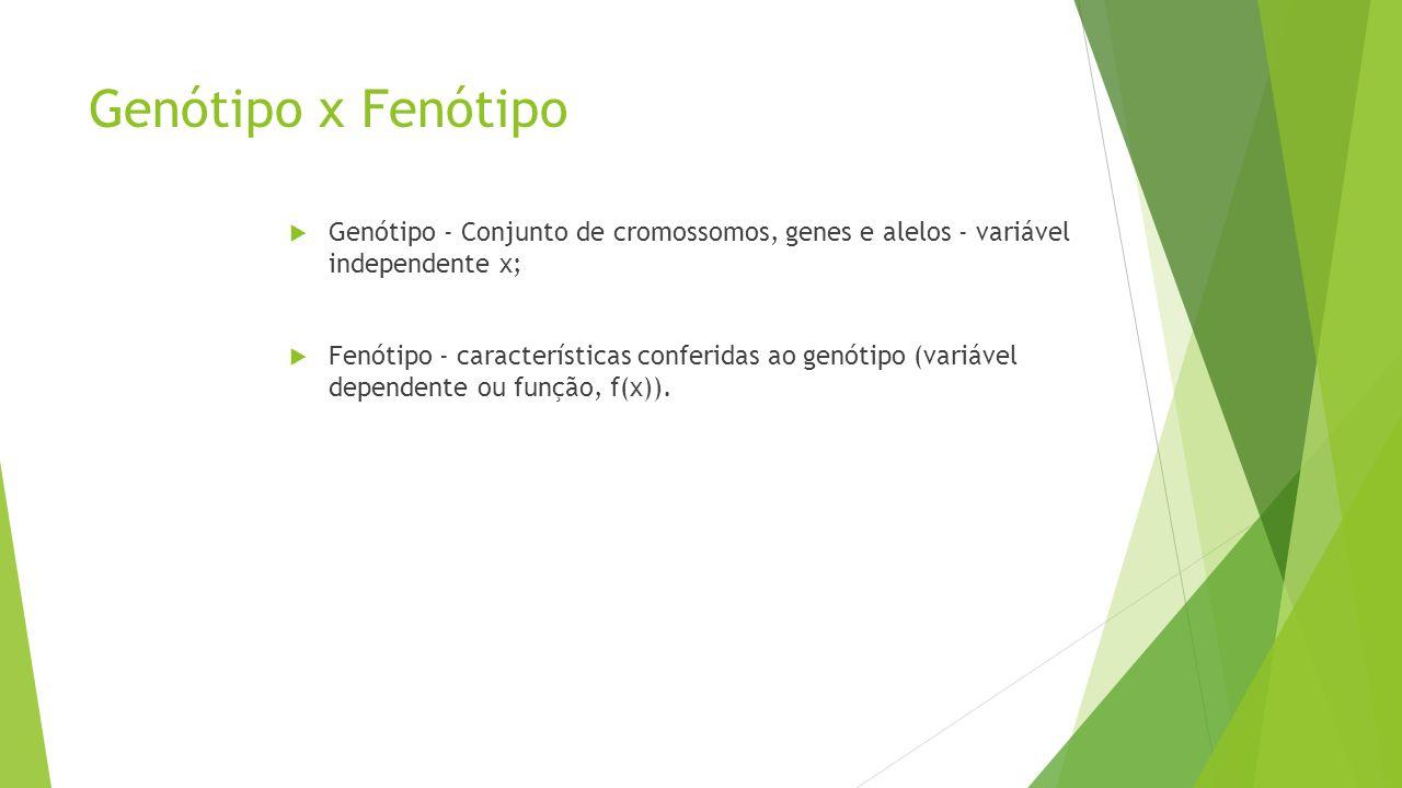 Genótipo x Fenótipo Genótipo - Conjunto de cromossomos, genes e alelos - variável independente x;