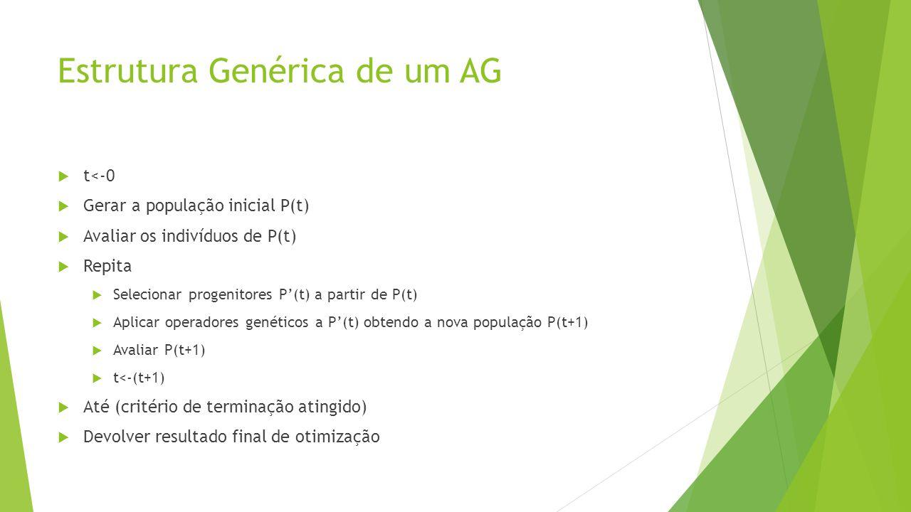 Estrutura Genérica de um AG