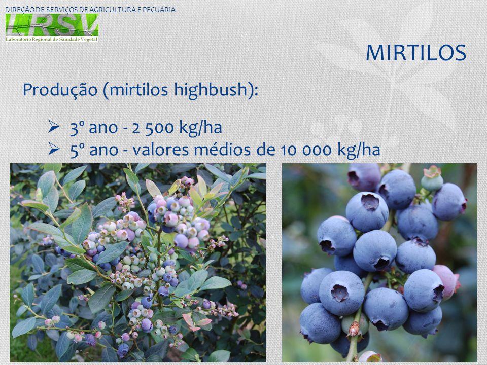 MIRTILOS Produção (mirtilos highbush): 3º ano - 2 500 kg/ha