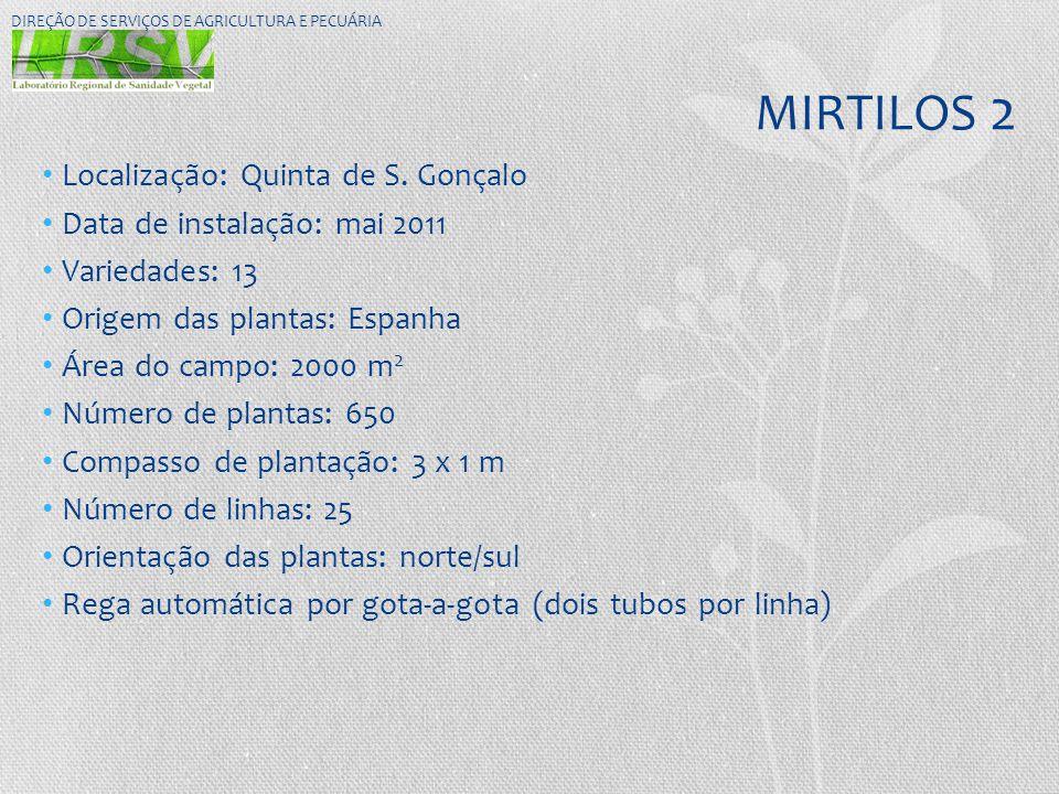 MIRTILOS 2 Localização: Quinta de S. Gonçalo