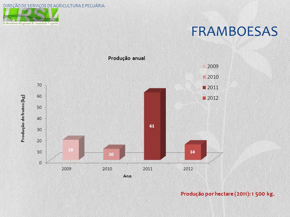 FRAMBOESAS Produção por hectare (2011): 1 500 kg.