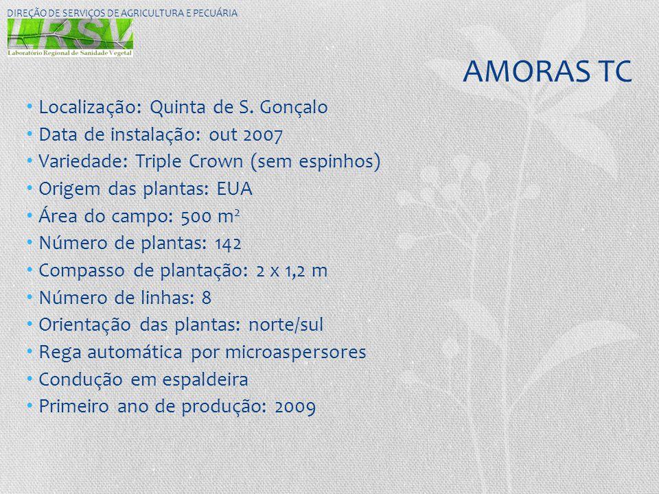 AMORAS TC Localização: Quinta de S. Gonçalo