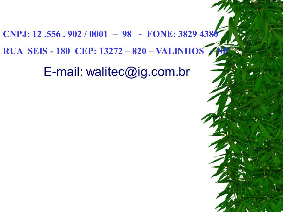 E-mail: walitec@ig.com.br