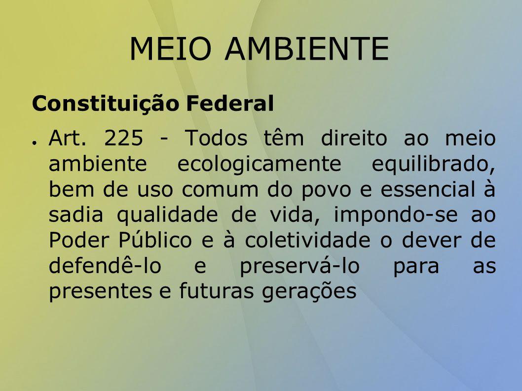 MEIO AMBIENTE Constituição Federal