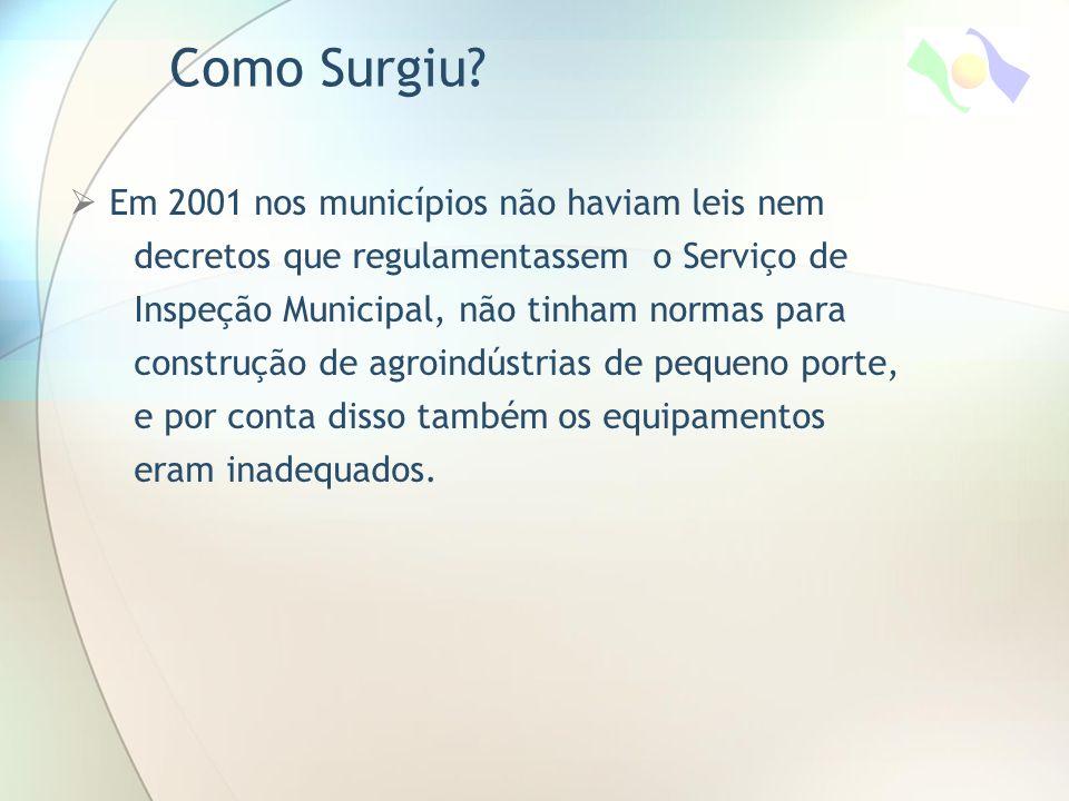 Como Surgiu Em 2001 nos municípios não haviam leis nem