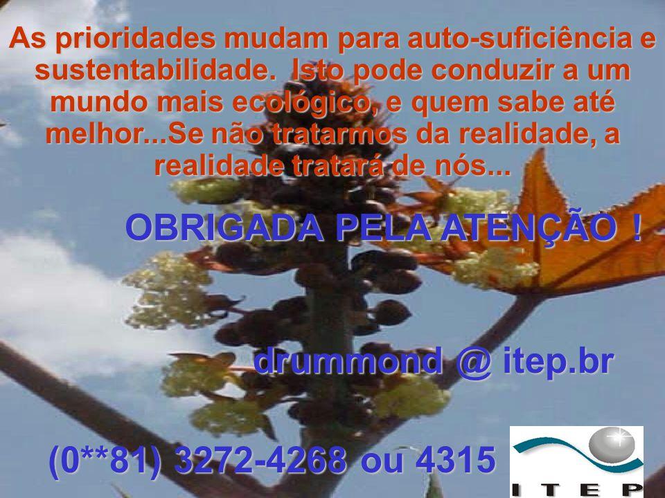 OBRIGADA PELA ATENÇÃO ! (0**81) 3272-4268 ou 4315 drummond @ itep.br