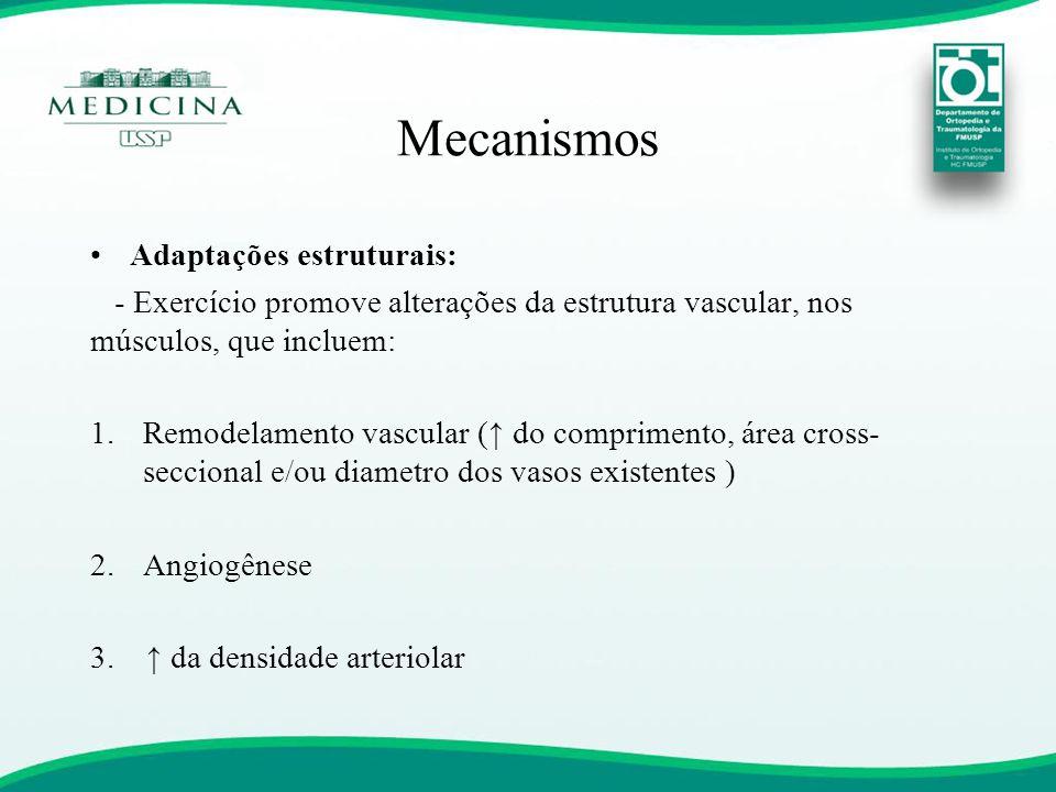 Mecanismos Adaptações estruturais:
