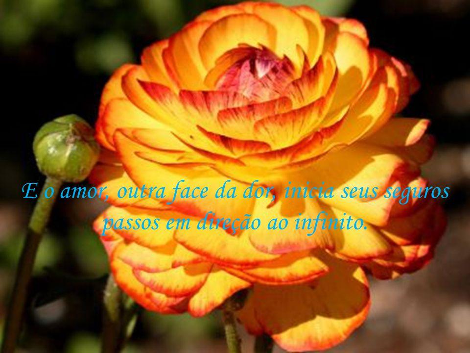 E o amor, outra face da dor, inicia seus seguros passos em direção ao infinito.