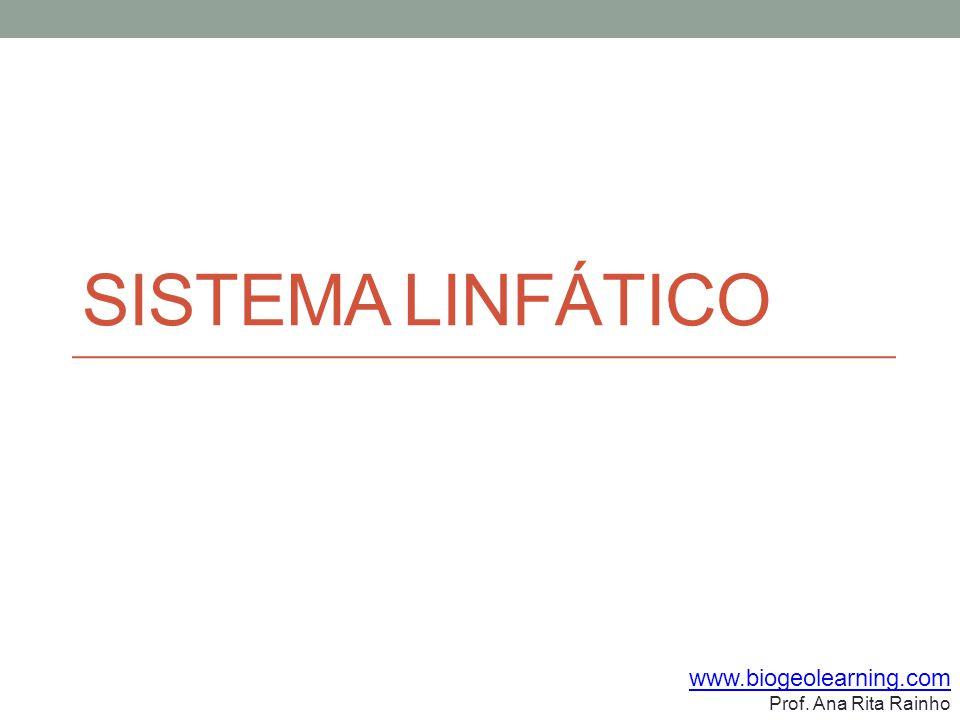 Sistema Linfático www.biogeolearning.com Prof. Ana Rita Rainho