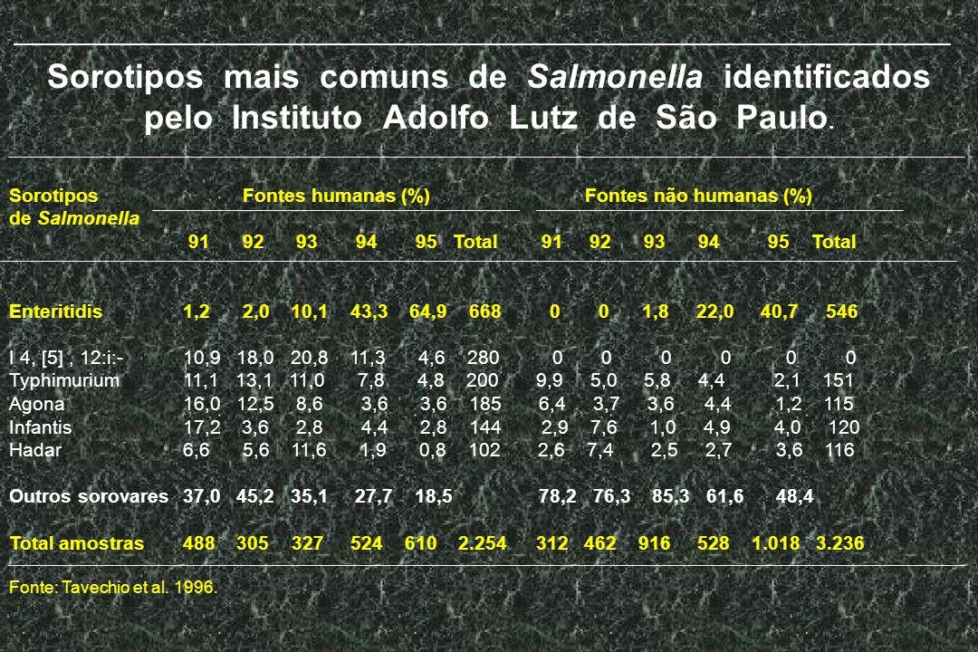 Sorotipos mais comuns de Salmonella identificados pelo Instituto Adolfo Lutz de São Paulo.