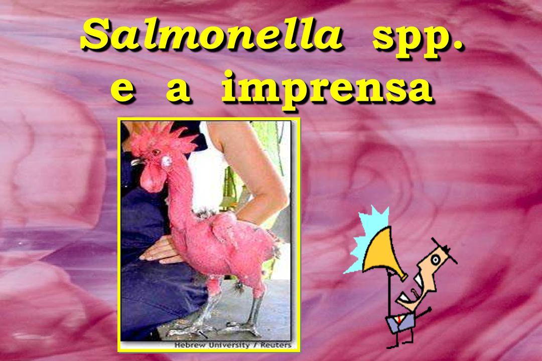 Salmonella spp. e a imprensa